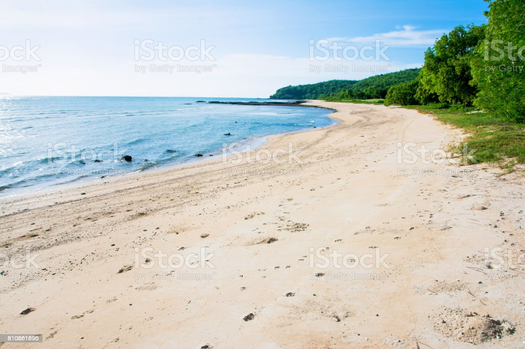 Beautiful beach with blue sky and tree background stock photo