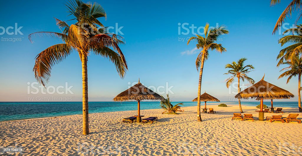 Beautiful beach with palm trees, fine sand and sun beds stock photo