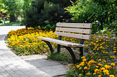 Beautiful bench in the park. Flower bed