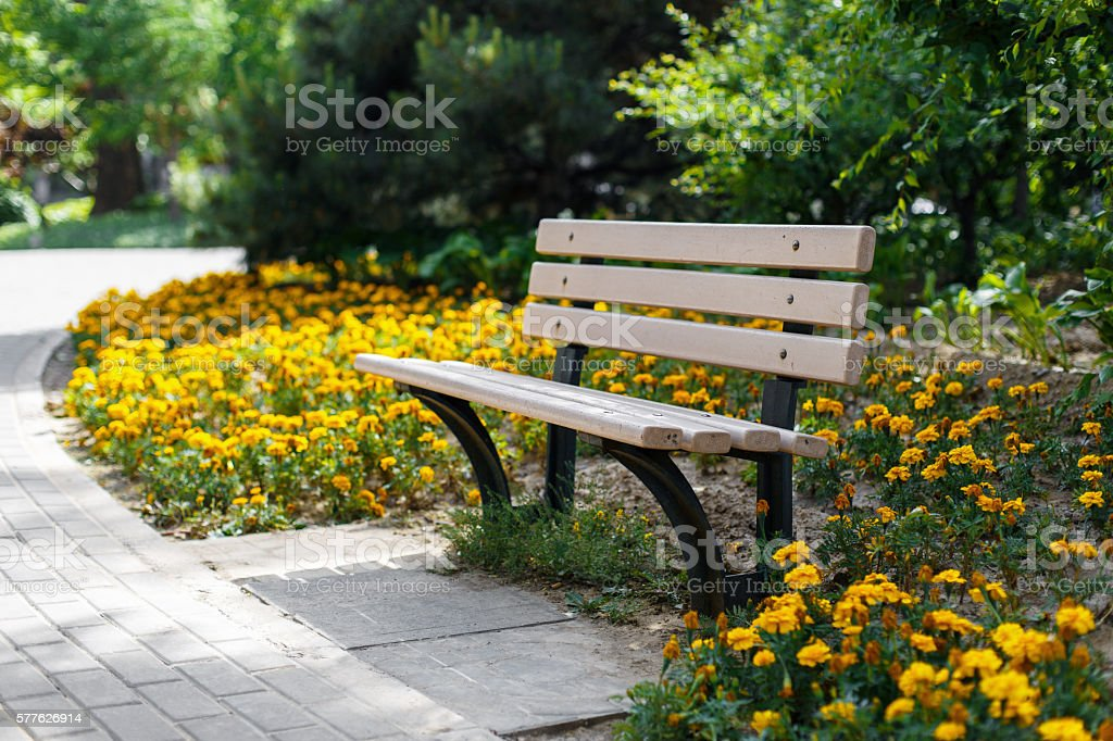 Beautiful bench in the park. Flower bed - Photo