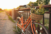 Beautiful bicycle with flowers in a basket stands on an avenue in a park at sunset