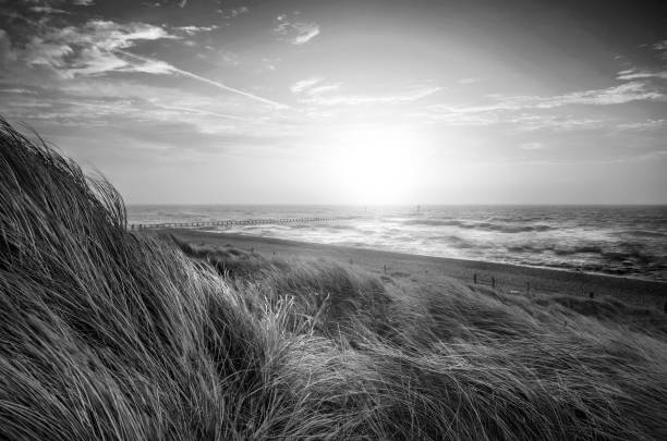 Beautiful black and white sunrise landscape image of sand dunes system over beach with wooden boardwalk stock photo