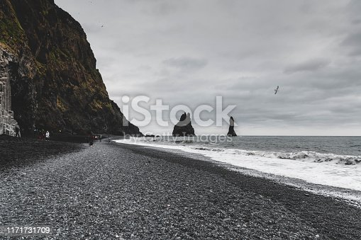 Beautiful black sand beach in Iceland