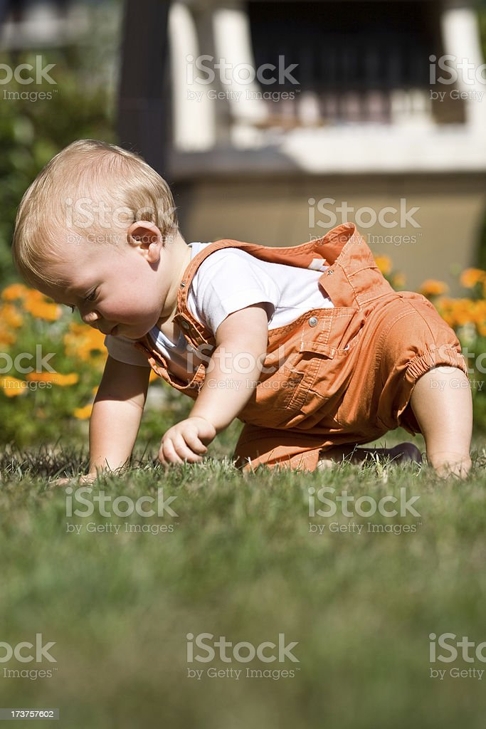 beautiful blond baby child play outdoor in garden royalty-free stock photo