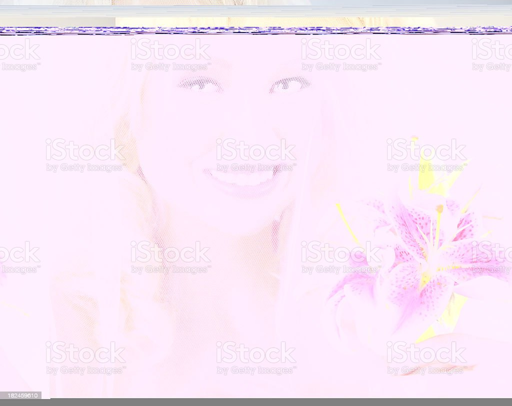 Beautiful Blond Bride royalty-free stock photo