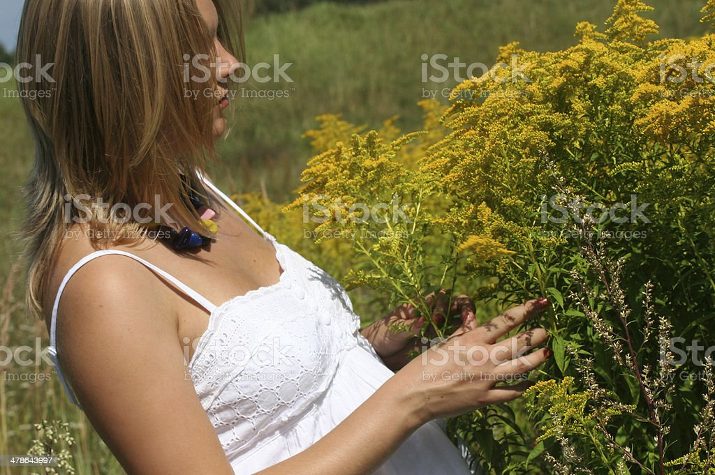 Beautiful blond pregnant woman in white dress collecting flowers royalty-free stock photo