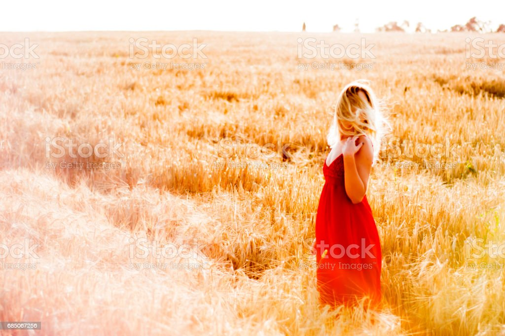 Beautiful blond woman in a red dress, on a wheat field at sunset royalty-free stock photo