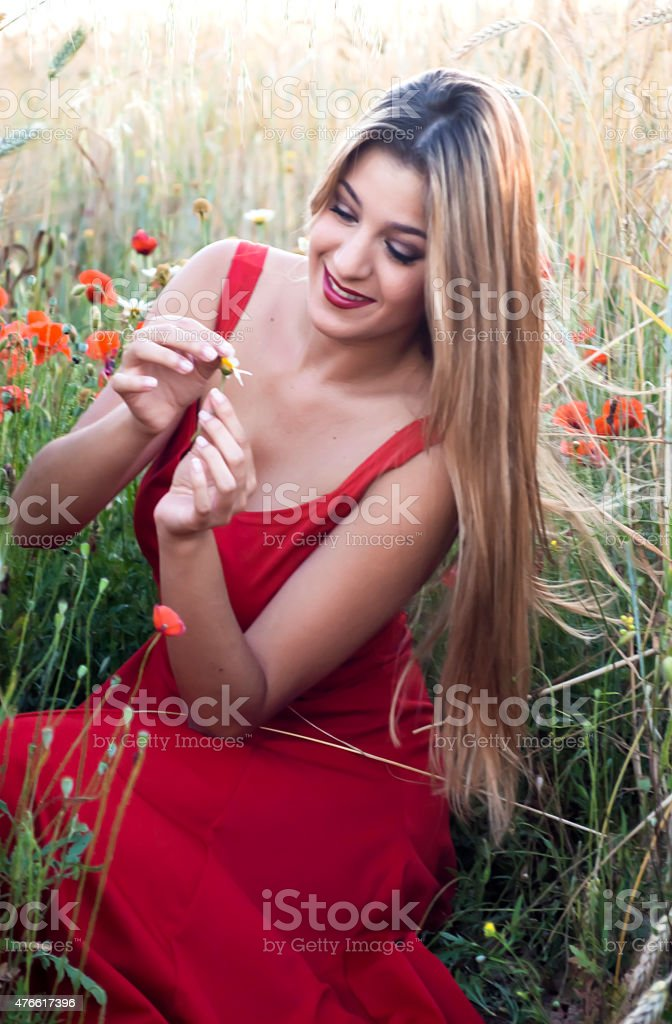 Beautiful blond woman in a wheat field with poppies  defoliating stock photo
