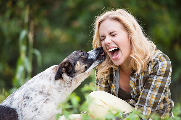 Beautiful blond woman with dog in green garden Beautiful blond woman with her dog in green garden licking stock pictures, royalty-free photos & images
