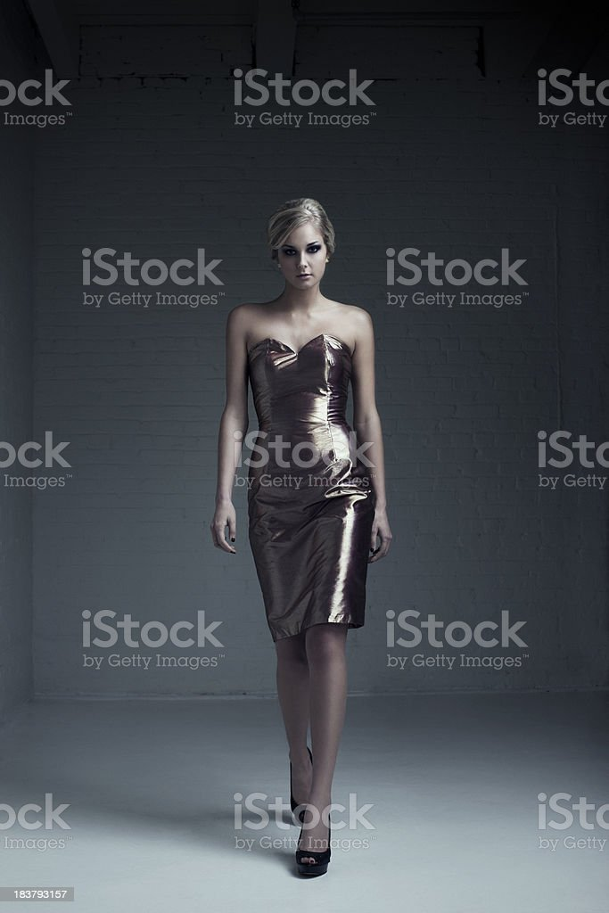 Beautiful Blond Young Woman Fashion Model in Evening Gown stock photo