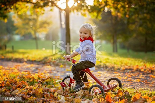 Beautiful blonde two years old toddler boy, riding red tricycle in the park on sunset, beautiful autumn day