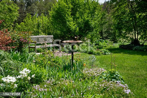 Sunny view of a beautiful green and growming  springtime garden with with grass, trees and flowers on a sunny day