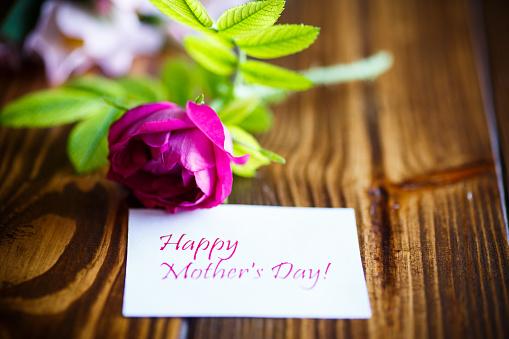 美麗綻放的玫瑰和賀卡為母親 照片檔及更多 傳統園林 照片