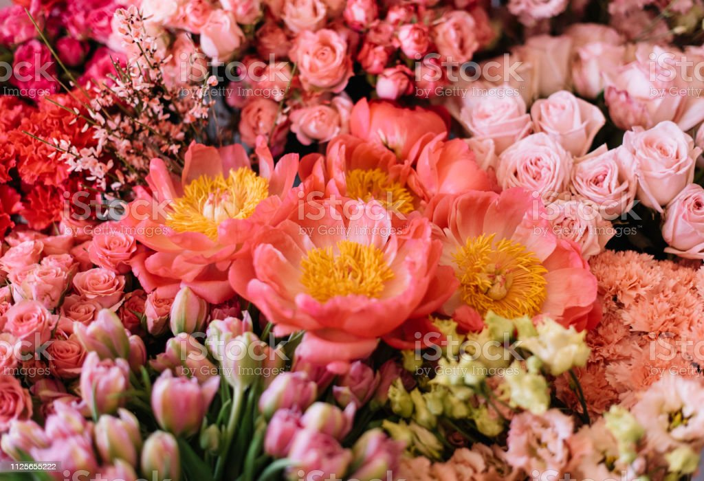 Beautiful blossoming fresh flower bed at the florist shop: giant coral peonies, pink roses, tulips, eustoma, top view, flat lay