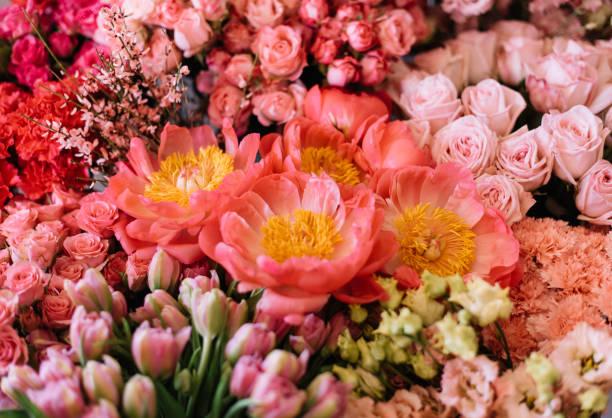 Beautiful blossoming fresh flower bed at the florist shop giant coral picture id1125655222?b=1&k=6&m=1125655222&s=612x612&w=0&h=czwfjmicazbdpzpquz76dhlazyodesj3j uufytxq5w=