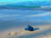 Tranquil Beach Scene with Blue Conch Shell