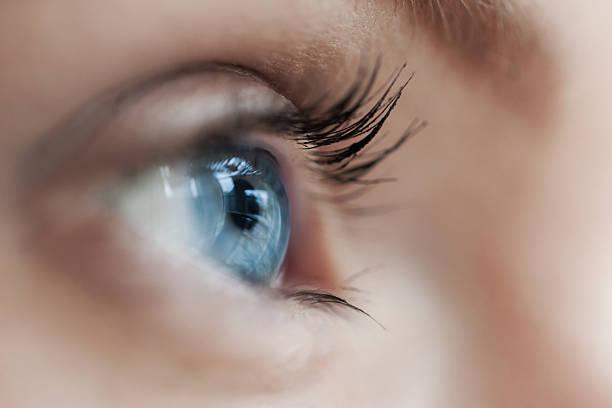 schöne blaue augen mit langen wimpern - blaue kontaktlinsen stock-fotos und bilder