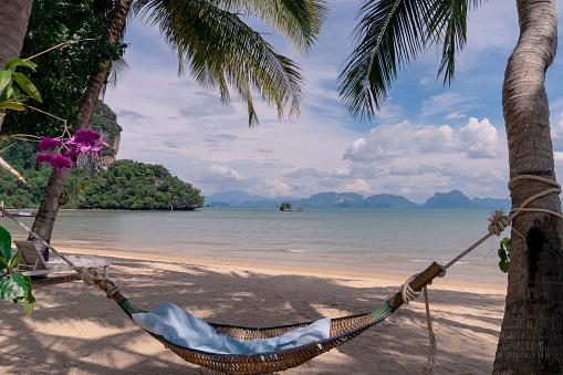 beautiful blue sea beach with hammock