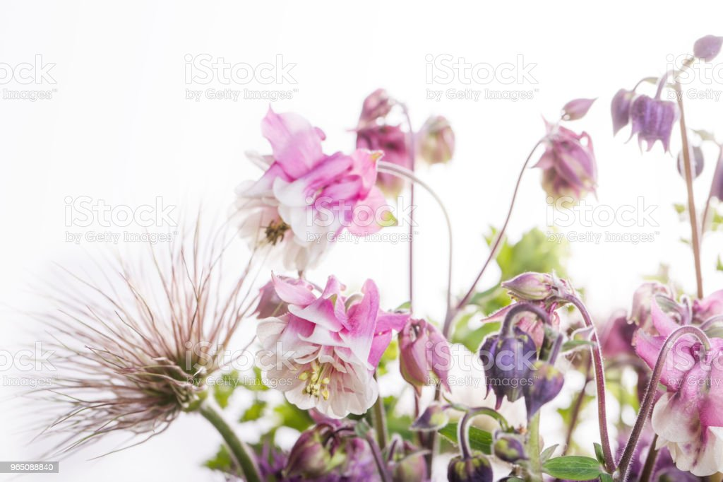 beautiful bouquet flower in vase royalty-free stock photo