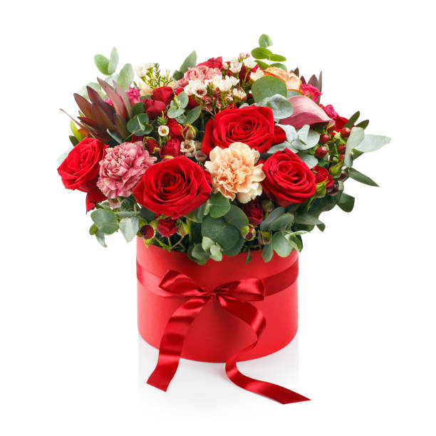 Beautiful bouquet in a red box on white picture id1166042531?b=1&k=6&m=1166042531&s=612x612&w=0&h=9g8bum8fncusccmywzugr1jtzykr0wh0aewxpw7lko0=