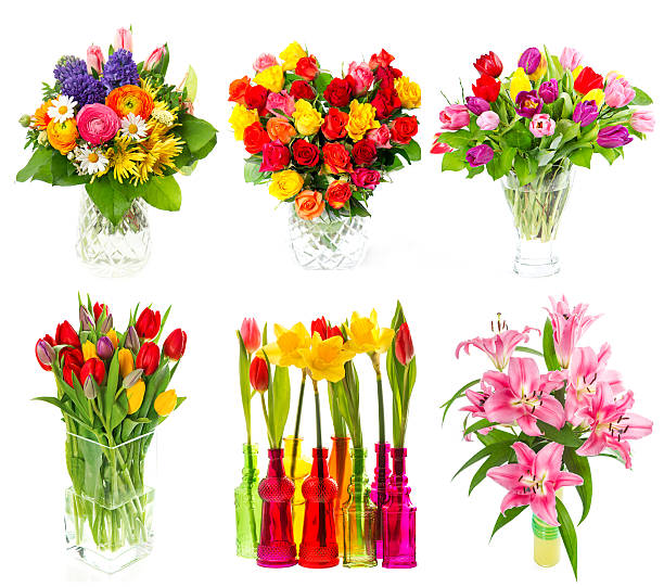 Beautiful bouquet of colorful flowers over white picture id499081023?b=1&k=6&m=499081023&s=612x612&w=0&h=w gu7zfcq1x6nyxptkge tugihdol 30ygxvohnuohq=