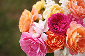 A beautiful bouquet of English roses from David Austin. Vintage Bright garden flowers for a holiday