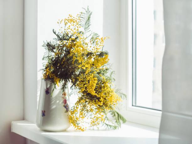 beautiful bouquet of mimosas in a vintage vase - immagini mimosa 8 marzo foto e immagini stock