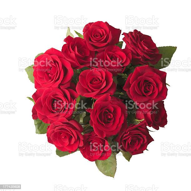 Beautiful bouquet of red roses picture id177435608?b=1&k=6&m=177435608&s=612x612&h=cug04r13dku wvqcyx3nyyjcnavfs3dioloqtraltya=