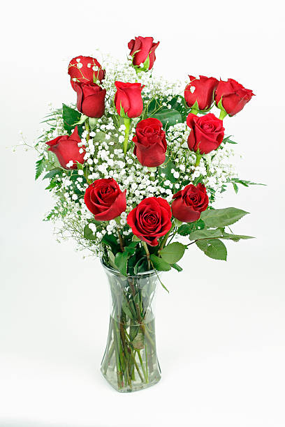 Beautiful bouquet of red roses picture id513946276?b=1&k=6&m=513946276&s=612x612&w=0&h=l63zkvzr6hraxremd4p6gndkv3frcvpwxg7tvt9xwzm=