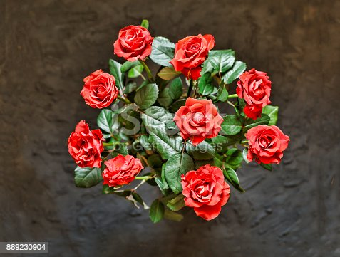 867916232 istock photo A beautiful bouquet of red roses 869230904