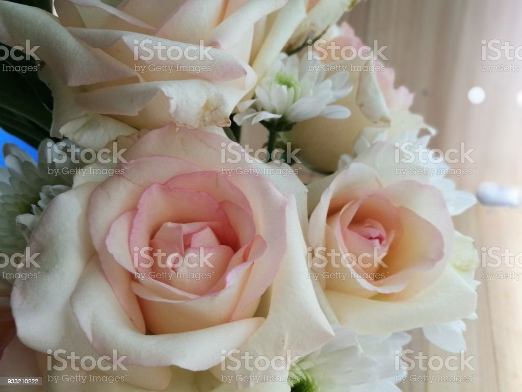 beautiful bouquet of roses pink yotika rose and orange pastel marriya picture id933210222