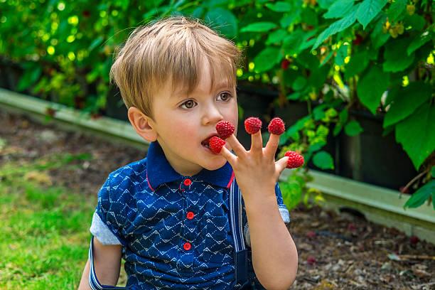 Schöne junge Essen Himbeeren – Foto