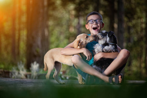 Beautiful boy with his best friend-dogs People and pats. Dog. Children.Very Shallow DOF. Developed from RAW; retouched with special care and attention; Small amount of grain added for best final impression. 16 bit Adobe RGB color profile. designer baby stock pictures, royalty-free photos & images