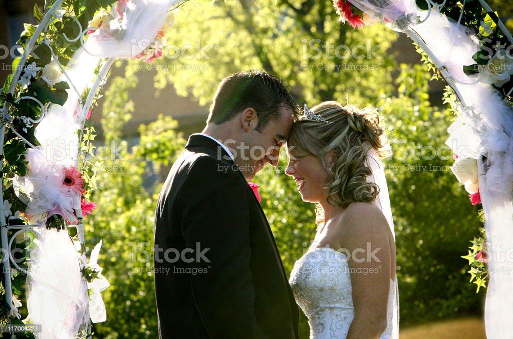 Beautiful Bride and Groom Wedding Dress royalty-free stock photo