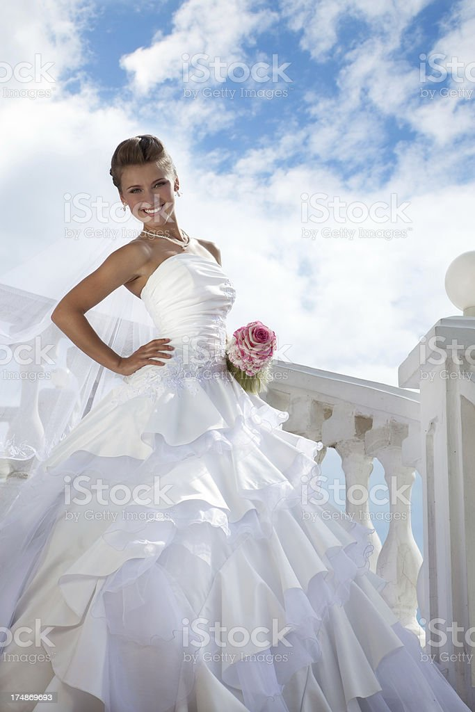 Beautiful Bride  in the sunny day.XXXL stock photo