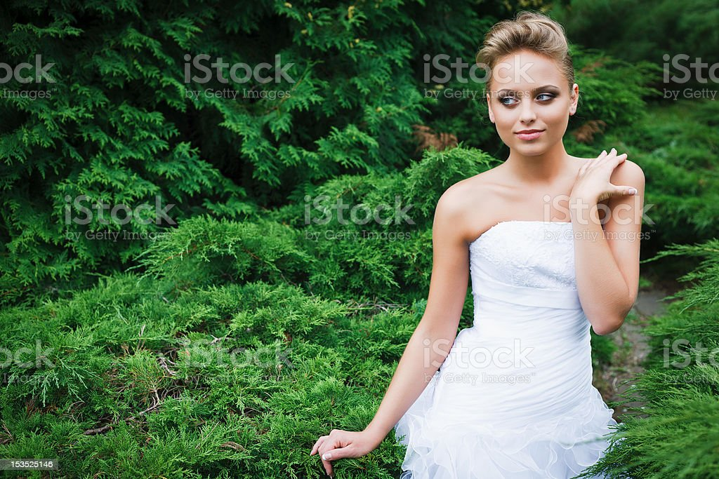 Beautiful bride in white dress royalty-free stock photo