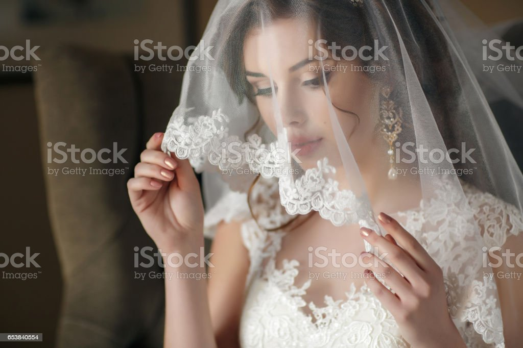 Beautiful bride in white wedding dress and veil stock photo