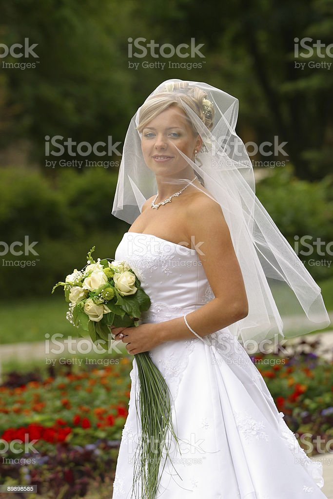 Beautiful bride royalty free stockfoto