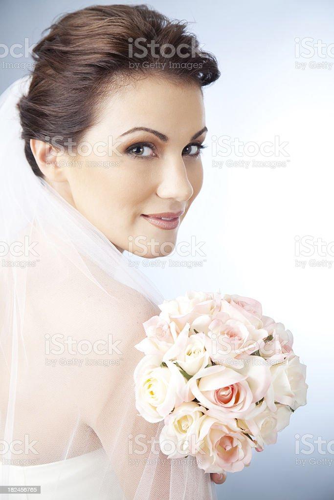 Retrato de la hermosa novia foto de stock libre de derechos