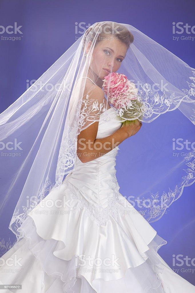 Beautiful Bride. XXXL royalty-free stock photo