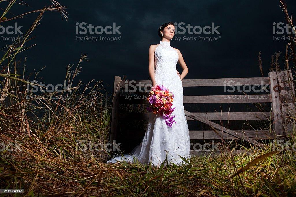 Beautiful Bride's Dress and Bouquet at nifgt in a farm - foto de acervo