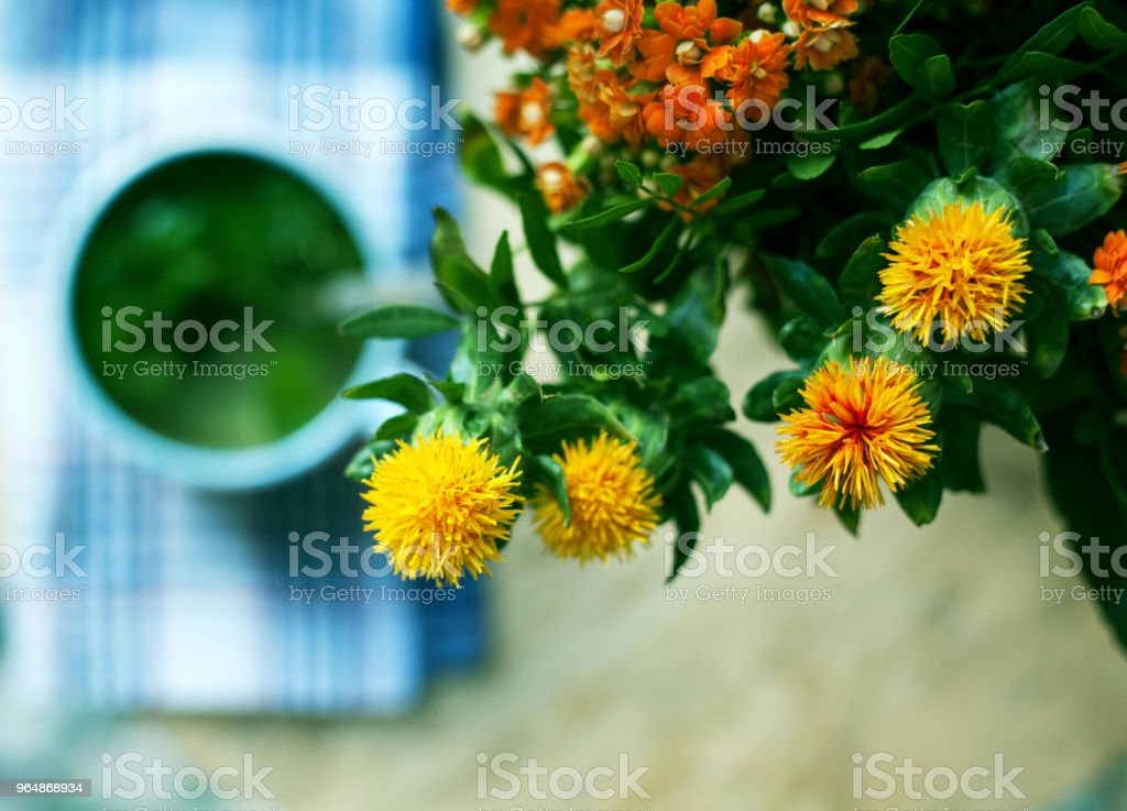 Beautiful bright bouquet of yellow wild flowers on a cup of tea and wooden table background. royalty-free stock photo