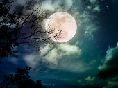 Landscape of dark night sky with many stars. Beautiful bright full moon above wilderness area in forest. Serenity nature background.