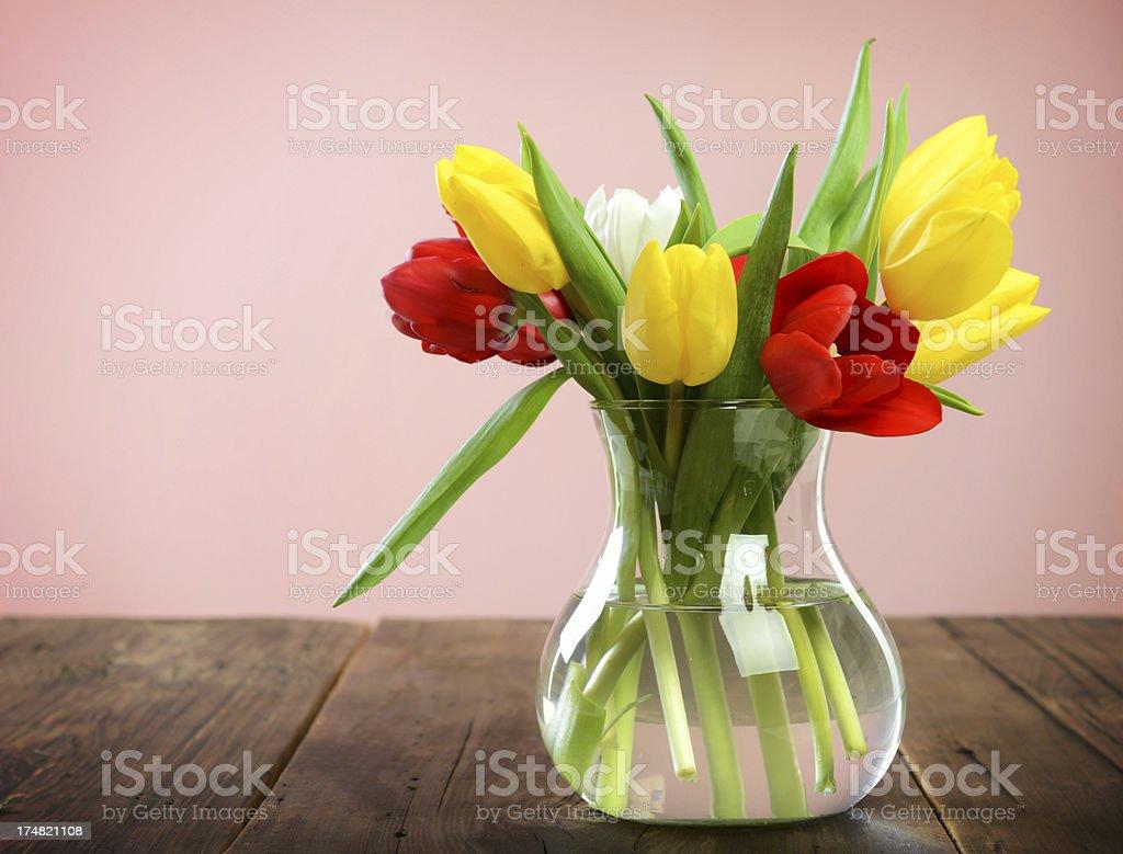 Beautiful bright tulips royalty-free stock photo