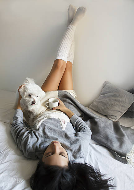 beautiful brunette girl lying with her cute dog on bed – zdjęcie