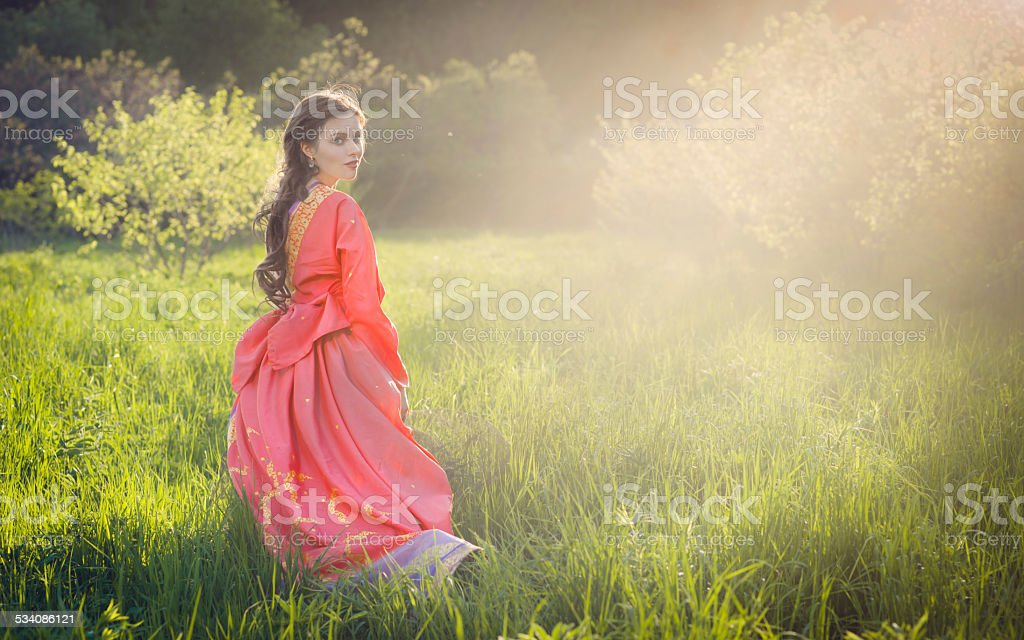 Красивая брюнетка женщина в платье в индийском стиле стоковое фото