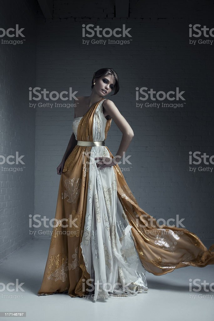 Beautiful Brunette Young Woman Fashion Model in Evening Gown stock photo