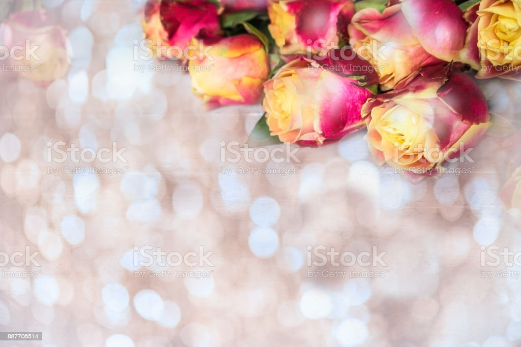 Beautiful bunch of two colored roses with bokeh stock photo