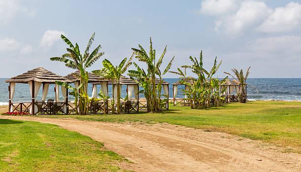 wunderschöne bungalows für entspannung am meer strand - hochzeitsreise zypern stock-fotos und bilder