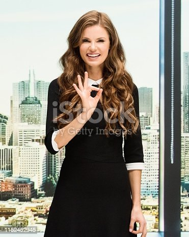 Beautiful businesswoman at the office